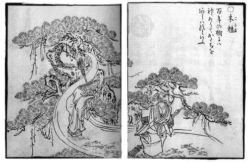 """Illustration d'un """"kodama"""" (esprit de la forêt), par l'artiste Toriyama Sekien (1712 - 1788)"""